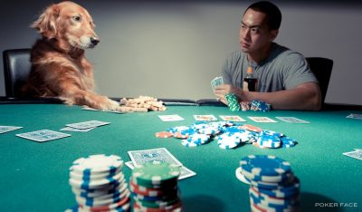 Poker Face (Explored fp) by lawrencechua - http://www.flickr.com/photos/8833159@N08/4468702057/